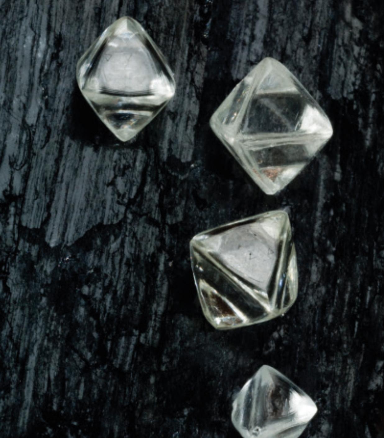 Rohdiamanten von Forevermark auf einer Holzplanke
